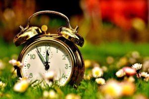 Wecker auf einer Blumenwiese. Die Zeiger stehen auf fünf vor zwölf.